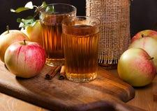 Ainda vida com sumo de maçã Fotografia de Stock Royalty Free
