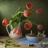 Ainda vida com tulipas e as cebolas vermelhas Fotografia de Stock Royalty Free