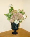 Ainda vida com um colorido da flor Fotos de Stock