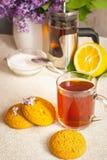 Ainda-vida com um copo de cookies do chá e de farinha de aveia Foto de Stock