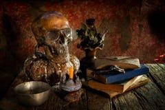 Ainda vida com um crânio e um vaso, Fotografia de Stock Royalty Free