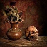 Ainda vida com um crânio e um vaso, Imagens de Stock Royalty Free