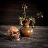 Ainda vida com um crânio e um vaso, Imagens de Stock