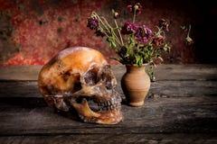 Ainda vida com um crânio e um vaso, Foto de Stock Royalty Free