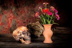 Ainda vida com um crânio e um vaso, Imagem de Stock Royalty Free