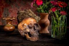 Ainda vida com um crânio e um vaso, Fotos de Stock Royalty Free