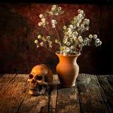 Ainda vida com um crânio e um vaso, produto de cerâmica Imagens de Stock