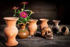 Ainda vida com um crânio e um vaso, produto de cerâmica Fotos de Stock Royalty Free