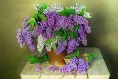 Ainda vida com um ramalhete do lilás de florescência em um fundo verde Fotografia de Stock Royalty Free