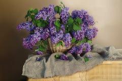 Ainda vida com um ramalhete do lilás de florescência no marrom Imagens de Stock