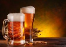 Ainda vida com uma cerveja de esboço Imagem de Stock Royalty Free
