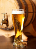 Ainda vida com uma cerveja de esboço Fotos de Stock