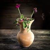 Ainda vida com uma flor do vaso, produto de cerâmica Imagem de Stock Royalty Free