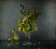 Ainda vida com uvas brancas foto de stock royalty free
