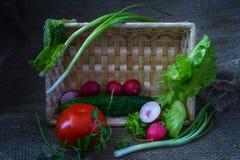 Ainda vida com vegetais Fotografia de Stock Royalty Free