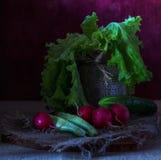 Ainda vida com vegetais Imagem de Stock Royalty Free