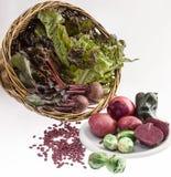 Ainda vida com vegetais Fotos de Stock Royalty Free