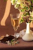 Ainda vida com vidro do vinho branco Fotos de Stock Royalty Free