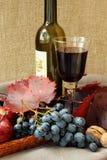 Ainda-vida com vidro do vinho vermelho Imagem de Stock Royalty Free