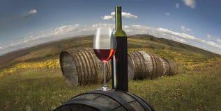 Ainda vida com vinho branco Fotografia de Stock Royalty Free