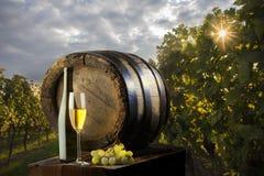 Ainda vida com vinho branco Fotografia de Stock