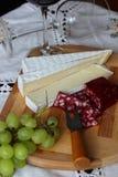 Ainda vida com vinho, queijo macio Fotografia de Stock