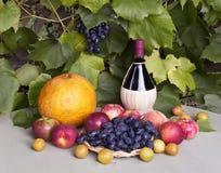 Ainda vida com vinho, uvas e fruto Imagens de Stock Royalty Free