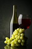 Ainda-vida com vinho vermelho Imagem de Stock Royalty Free