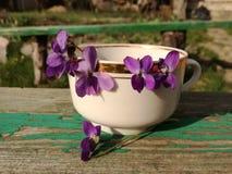 Ainda vida com violetas imagens de stock