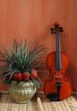 Ainda vida com violino imagens de stock royalty free
