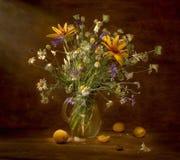 Ainda vida com wildflowers e abricós Fotografia de Stock Royalty Free