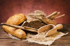 Ainda vida 1 Composição com tipos diferentes de pão Imagens de Stock Royalty Free