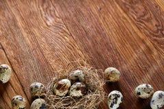 Ainda-vida conceptual com os ovos de codorniz no ninho do feno sobre o fundo de madeira escuro, fim acima, foco seletivo Imagem de Stock Royalty Free