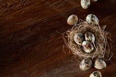 Ainda-vida conceptual com os ovos de codorniz no ninho do feno sobre o fundo de madeira escuro, fim acima, foco seletivo Imagens de Stock