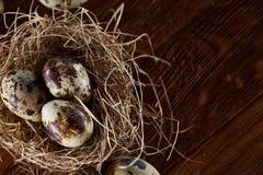 Ainda-vida conceptual com os ovos de codorniz no ninho do feno sobre o fundo de madeira escuro, fim acima, foco seletivo Foto de Stock Royalty Free