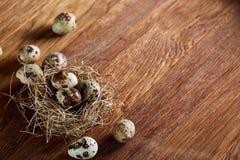 Ainda-vida conceptual com os ovos de codorniz no ninho do feno sobre o fundo de madeira escuro, fim acima, foco seletivo Fotos de Stock
