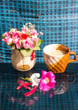 Ainda vida, copo de café com Rose Plastic, variegata de Erythrina Fotos de Stock