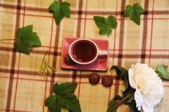Ainda vida: Copo, folhas, peônia e doces imagens de stock royalty free