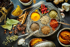 Ainda vida culinária de especiarias asiáticas sortidos Foto de Stock Royalty Free