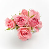 Ainda vida da rosa do rosa no copo cerâmico Imagem de Stock
