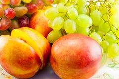 Ainda vida das frutas Fotos de Stock Royalty Free