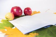 Ainda vida das maçãs e de um caderno contra Imagem de Stock