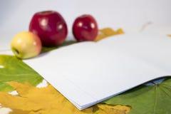 Ainda vida das maçãs e de um caderno contra Imagens de Stock