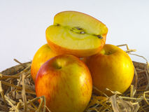 Ainda vida das maçãs na cesta no fundo branco Fotografia de Stock