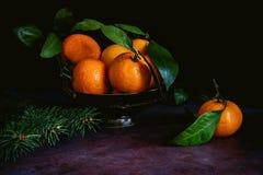 Ainda vida das tangerinas com folhas Fotos de Stock Royalty Free