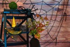 Ainda-vida de Dia das Bruxas com vaso, planta, aranha e chapéu Foto de Stock Royalty Free