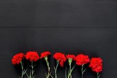 Ainda vida de diversos cravos vermelhos no fundo preto Imagem de Stock