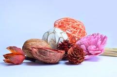 Ainda vida de flores secadas Imagens de Stock Royalty Free