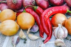 Ainda vida de frescos, vegetais do outono Fotografia de Stock Royalty Free
