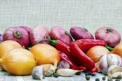 Ainda vida de frescos, vegetais do outono outono Fotos de Stock Royalty Free